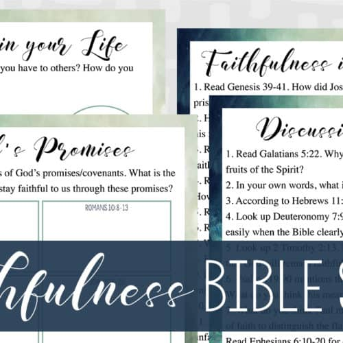 Faithfulness Bible Study (Adults)