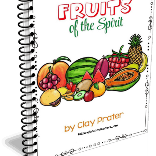 Fruits of the Spirit Study
