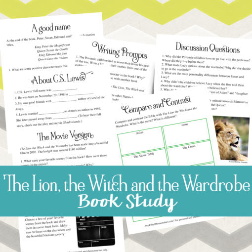 The Lion, The Witch and The Wardrobe Book Study