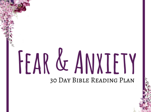 Fear And Anxiety - Journal Through The Bible