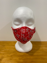Load image into Gallery viewer, Red Paisley Face Mask