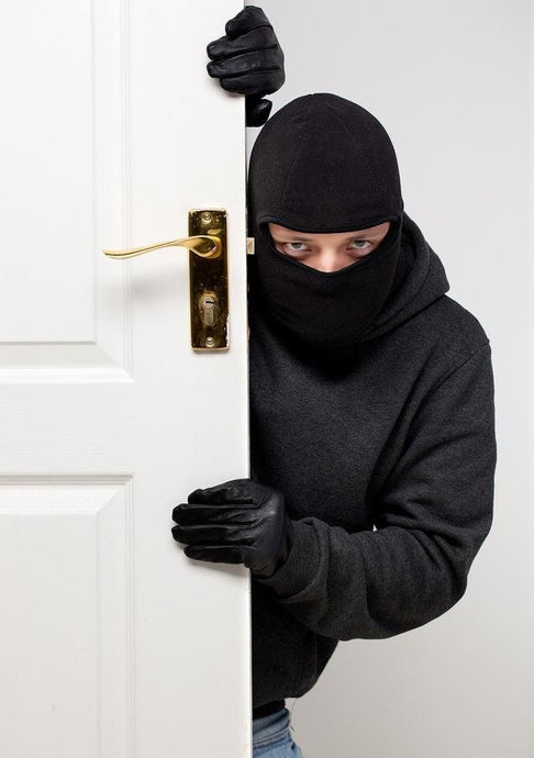 How to choose a home anti-theft system?
