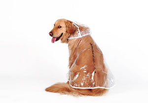 Dog Raincoat 🐶