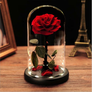 Little Prince Classic Eternal Preserved Rose Glass Box set