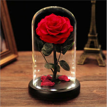Load image into Gallery viewer, Little Prince Classic Eternal Preserved Rose Glass Box set