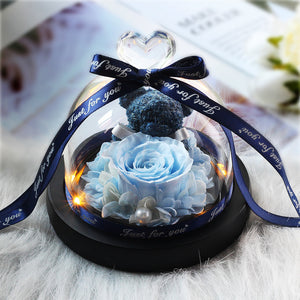 Eternal Preserved Fresh Rose Teddy Bear Molding LED Light In A Flask