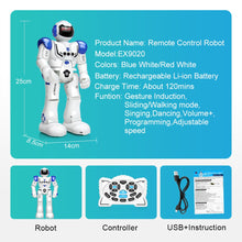 Load image into Gallery viewer, DODOELEPHANT Robot USB Charging Dancing Gesture Action Figure