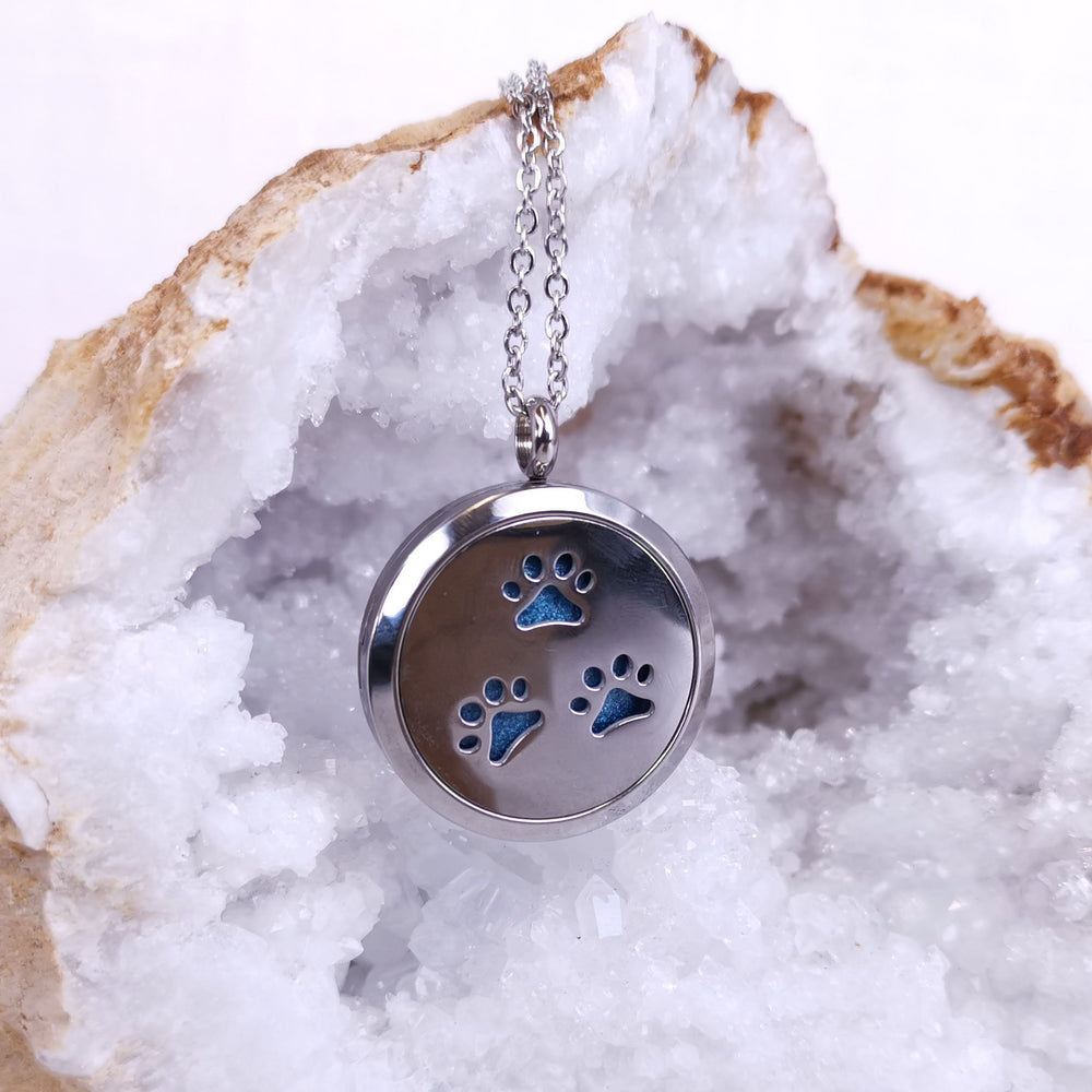 Paw Print Ashes Locket