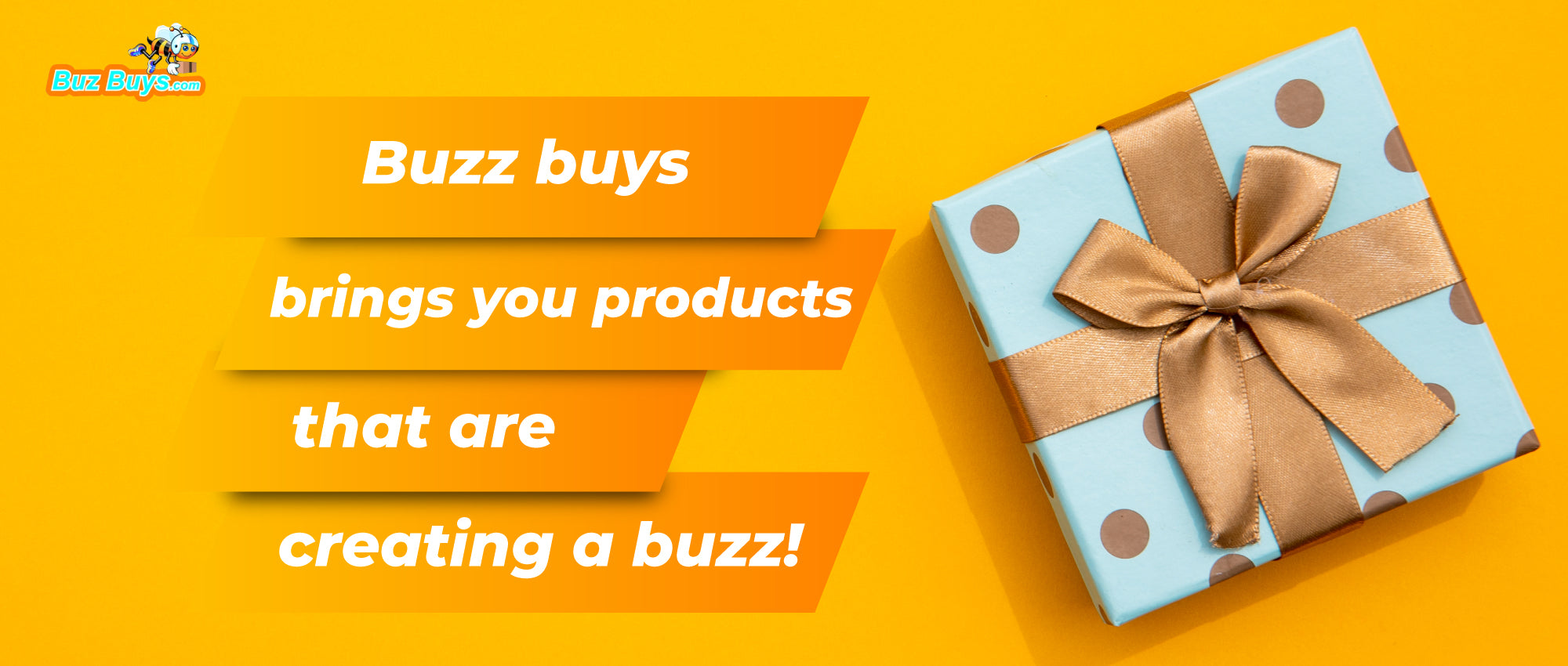 Buz buys brings you products that are creating a buzz!