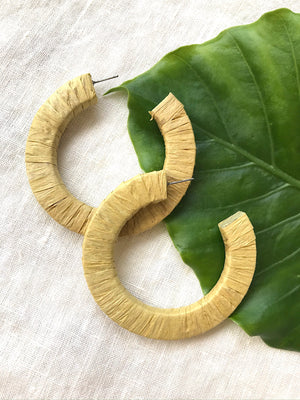 Key Lime Wrapped Hoops