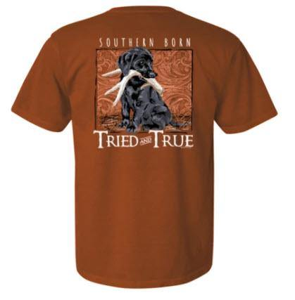 Lap Pup T-shirt by Tried and True - Turnmeyer Galleries