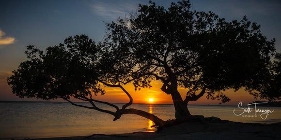 Sunset in Aruba Fine Art Landscape Photography Print - Turnmeyer Galleries