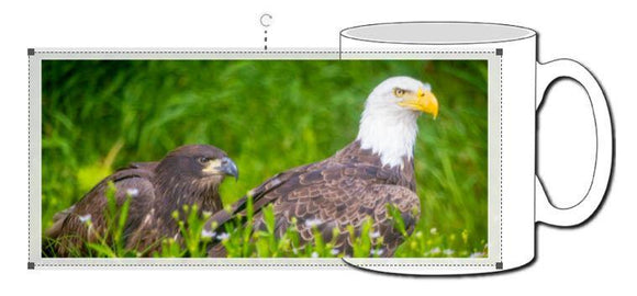 Bald Eagles Ceramic Photographic Mug - Turnmeyer Galleries