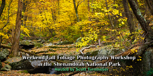 Fall Foliage Weekend Photography Workshops in the Shenandoah National Park