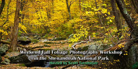 Fall Foliage Weekend Photography Workshops in the Shenandoah National Park - Turnmeyer Galleries