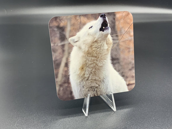 The Howl Photographic Coaster - Turnmeyer Galleries