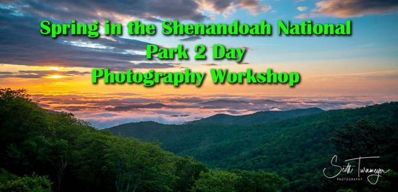 Spring in the Shenandoah National Park 2 day Photography Workshop - Turnmeyer Galleries