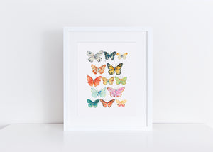 Small Butterflies