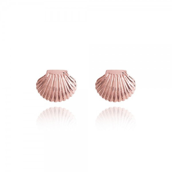 Joma Jewellery Seashell Earrings - Rose Gold