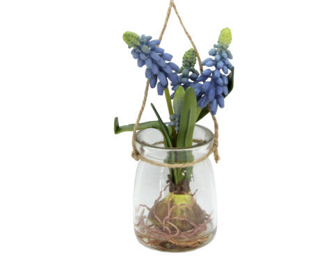 Gisela Graham Muscari in Glass Jar