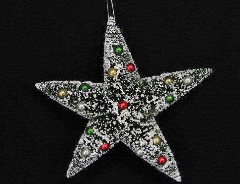 Snowy Bristle Star Decoration