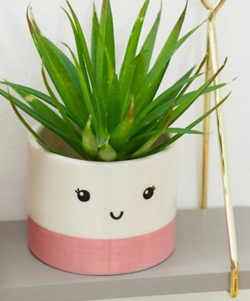 Sass & Belle Mini Pink Face Planter