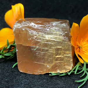 #CAL-196 Golden Calcite by each