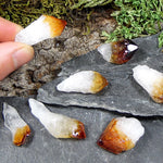 Mini Citrine Crystals 4pk