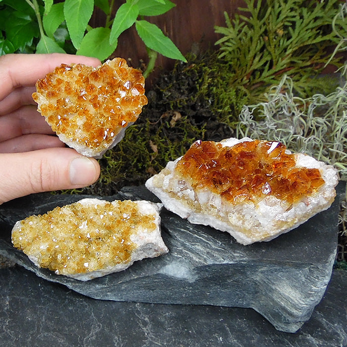 Citrine Cluster 1-1.5 inch