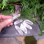 #LM-1065 Baby Lemurian Seed Crystal by each