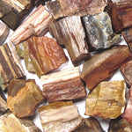 Rough Petrified Wood Material by the pound
