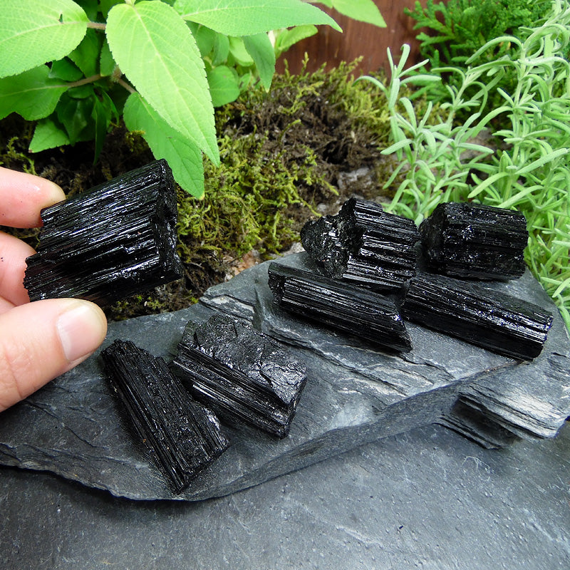 #TC-475B Rough Black Tourmaline Crystal 40-49g