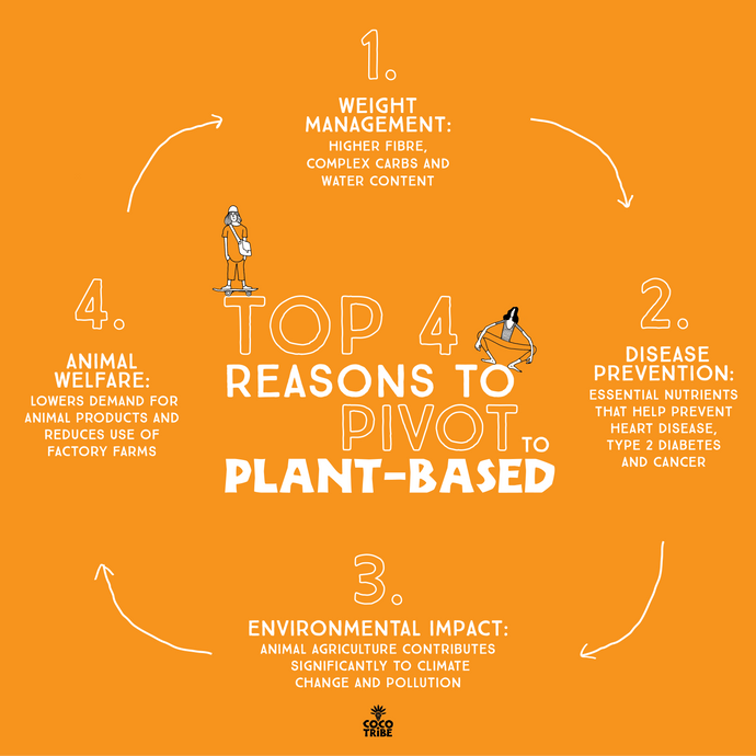 Top 4 Reasons to Pivot to Plant Based
