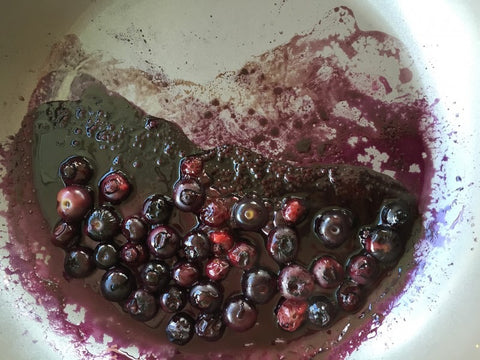 Blueberry sauce Dani Stevens vegan recipe