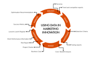 Using data in marketing innovation