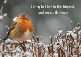 Christmas card - No.  14. Robin on a Snowy Branch (Pack of 10)