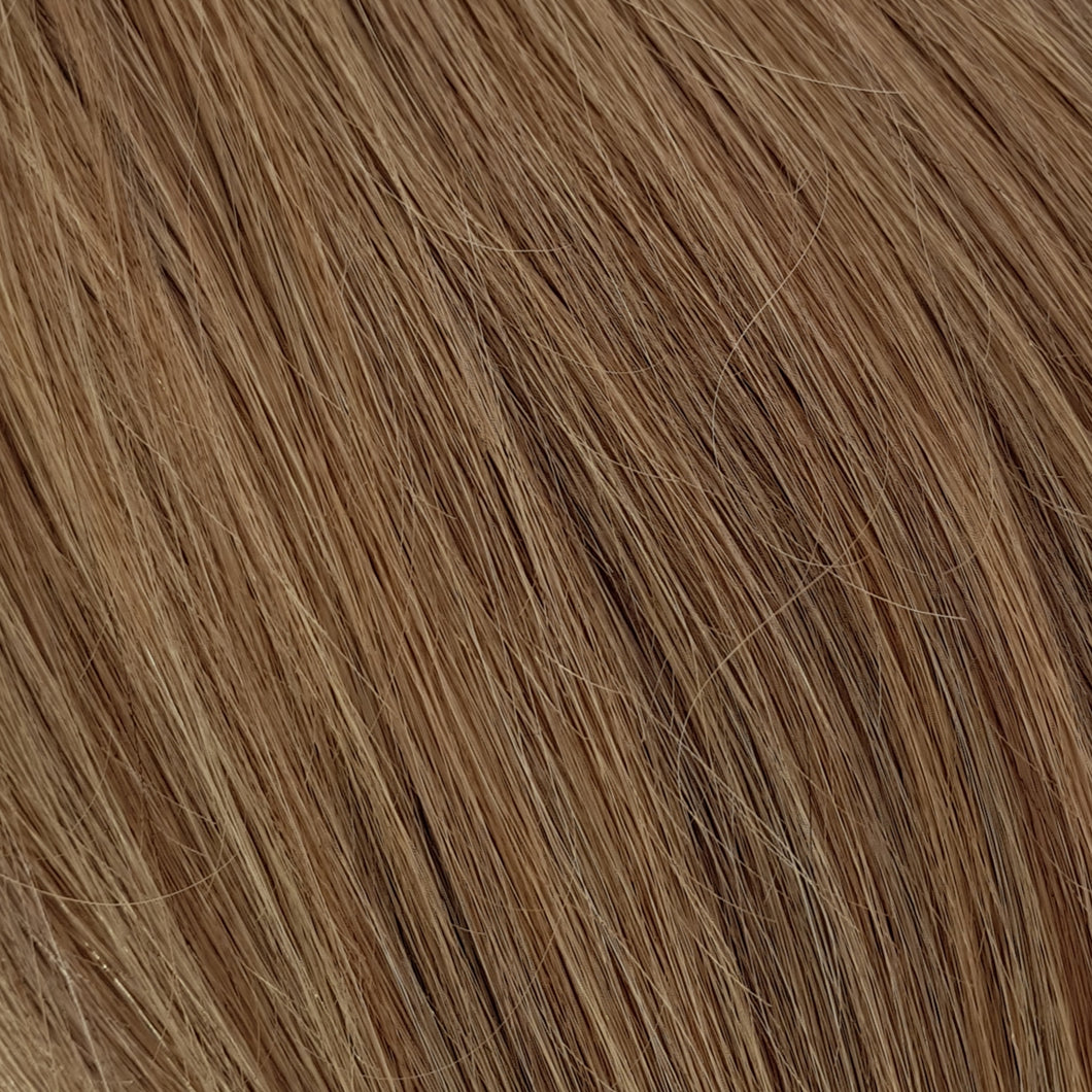 Ponytail Extensions - Bronde #10