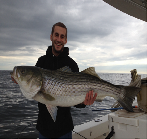 38 pound Striper caught in 2012 by Ryan Bennett