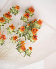 Load image into Gallery viewer, Dried Safflower