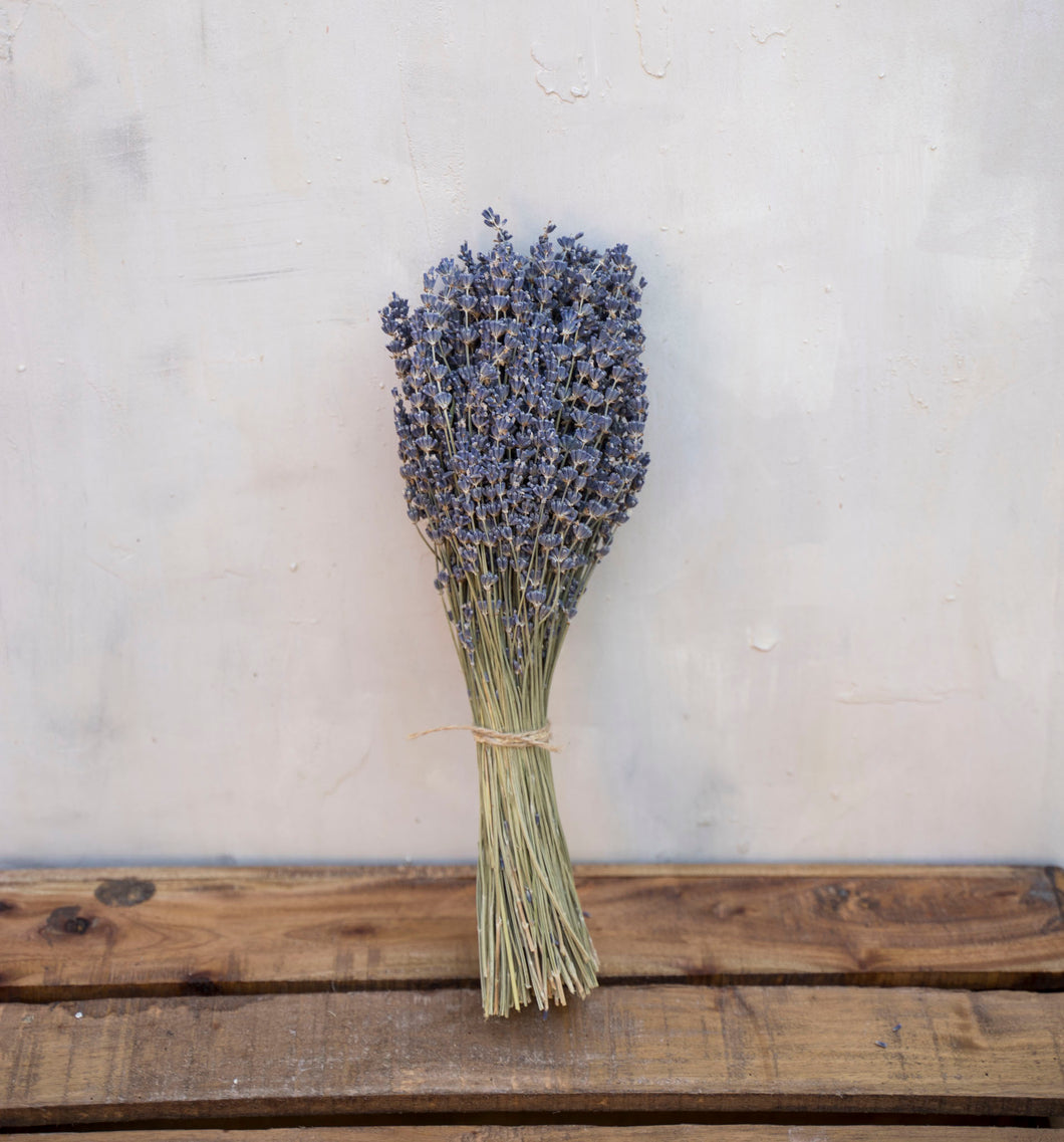 Dried French Blue Lavender