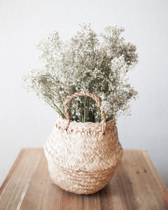 Belly Basket + Dried Flowers