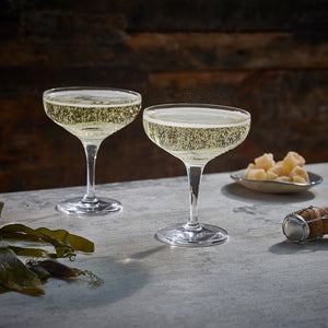 Tonn Champagne Coupe Glass - Pair