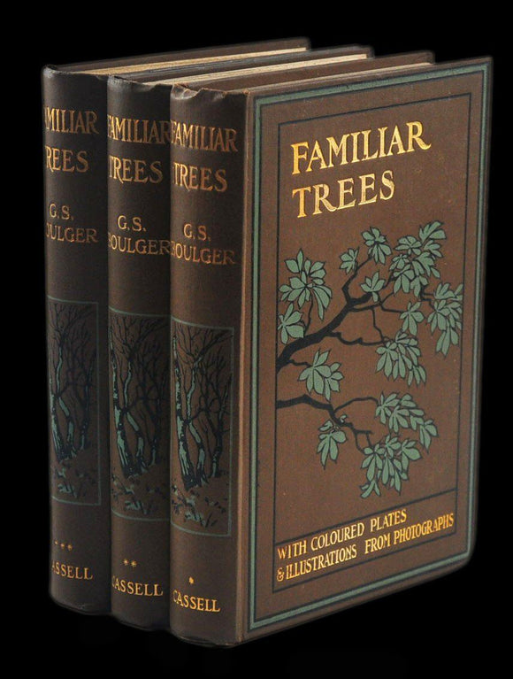 Livro - FAMILIAR TREES