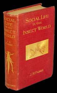 SOCIAL LIFE IN THE INSECT WORLD