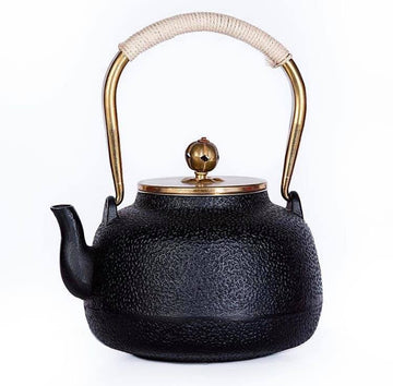 Japanese Style Tea Pot
