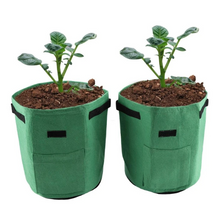 Load image into Gallery viewer, Tomatoes Potato Grow Bag Fruits Vegetables Planter