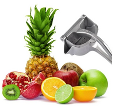 Load image into Gallery viewer, Stainless Steel Fruit Juicer