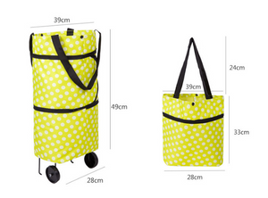 ECO-FRIENDLY CARRY EASILY BAG