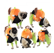 Load image into Gallery viewer, BELOVED PET THIS HALLOWEEN!