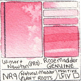 NR19 Winsor and Newton Professional Watercolor Rose Madder Genuine Color Chart Swatch Card